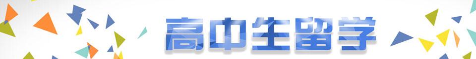 新通教育banner